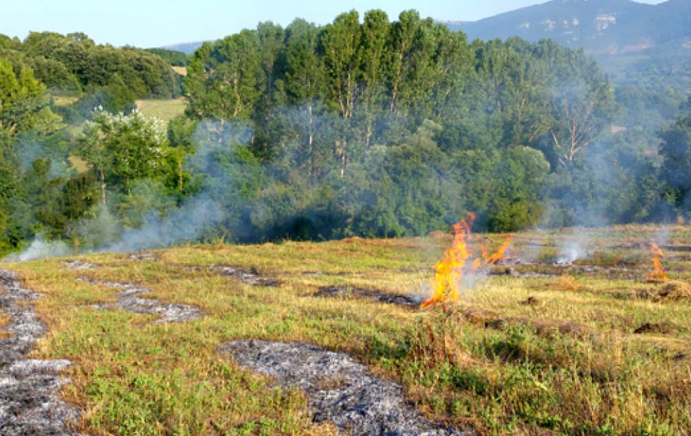 Dvanaest požara na području HNK