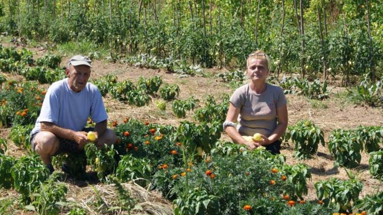 Emira i Halid Vuković na svom poljoprivrednom imanju u Velhovu