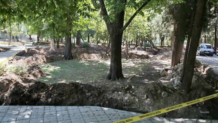 U okviru prve faze obnove gradskog parka počelo uklanjanje suhih stabala