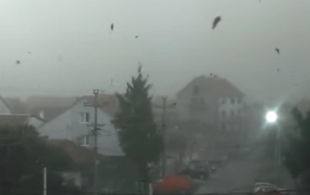 Nevrijeme u Beogradu, ima povrijeđenih i nestalih