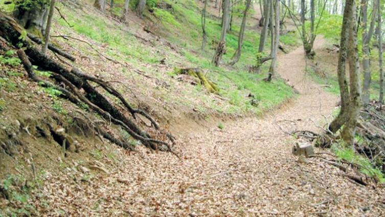 Staza za brdski biciklizam (Foto: E. Muračević)