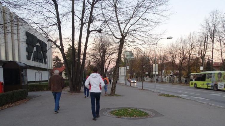"""Aleja vodi od zgrade Narodne skupštine do parka """"Mladen Stojanović"""" (Foto: G. Dakić)"""