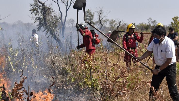 Požar u Boliviji