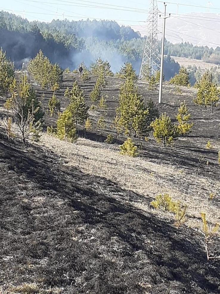 Požar u Tomislavgradu