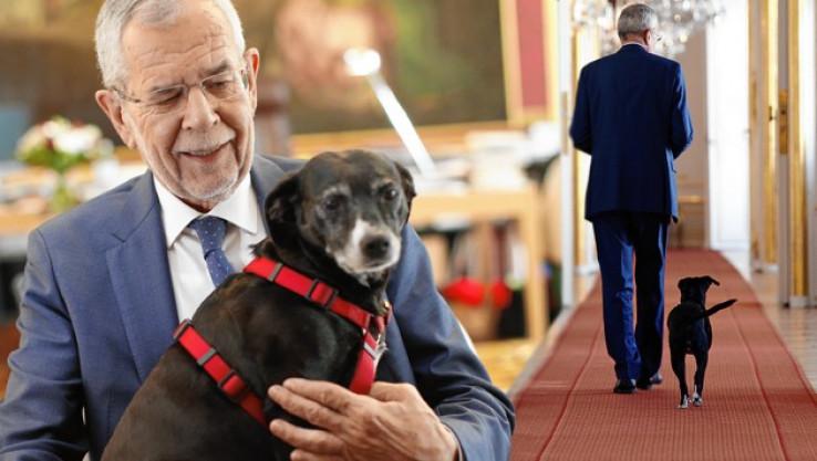 Predsjednik Austrije sa svojim psom