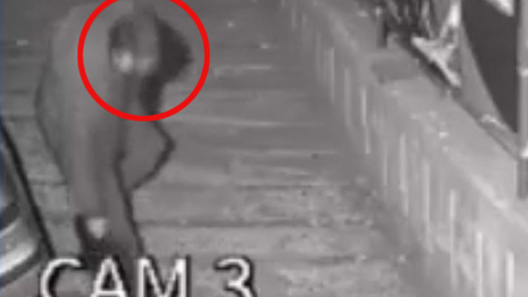 Kamere snimile kradljivca