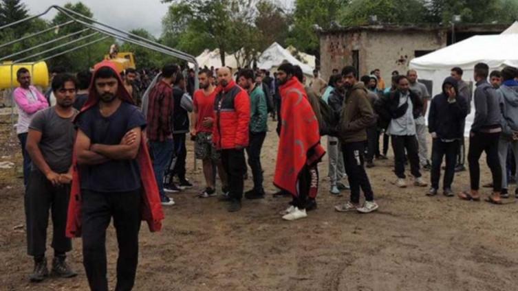 Image result for migranti zaraze
