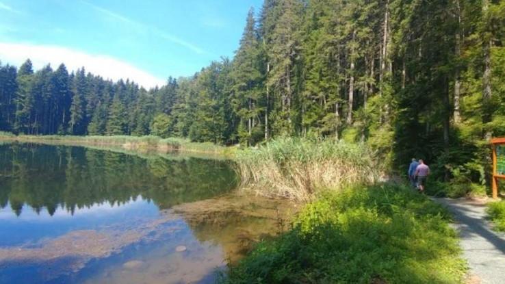 Raj za posjetioce - Avaz, Dnevni avaz, avaz.ba