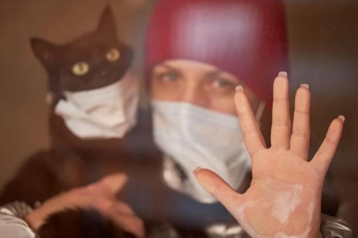 Prijavljen prvi slučaj infekcije mačke, koja je koronavirus dobila od svog vlasnika