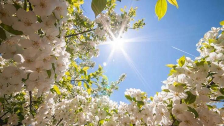 Sunce i u narednim danima