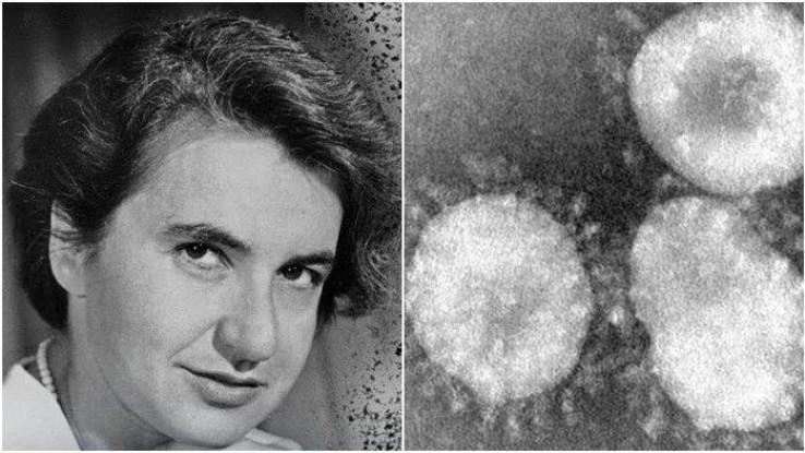Prvi članak o koronavirusu joj odbijen