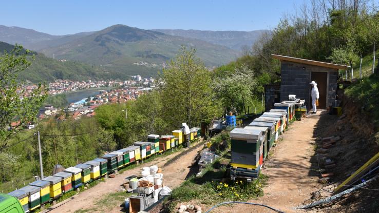 Pčelinjak u Barama, na periferiji Goražda