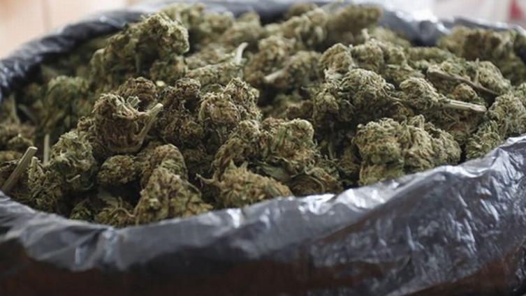 Policija oduzela marihuanu
