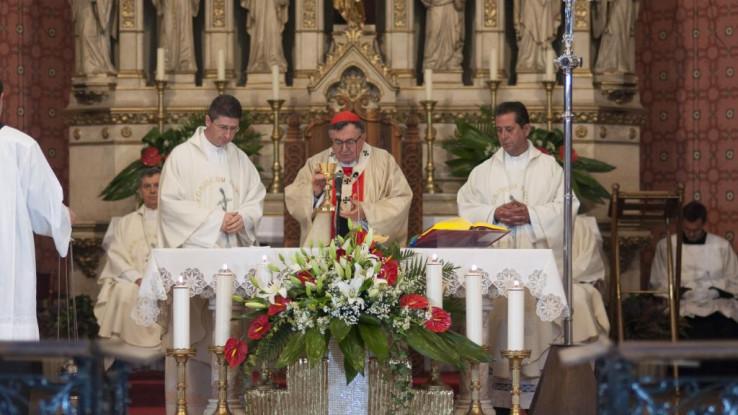 Kardinal zahvalan svima koji su se javno distancirali od govora mržnje - Avaz, Dnevni avaz, avaz.ba