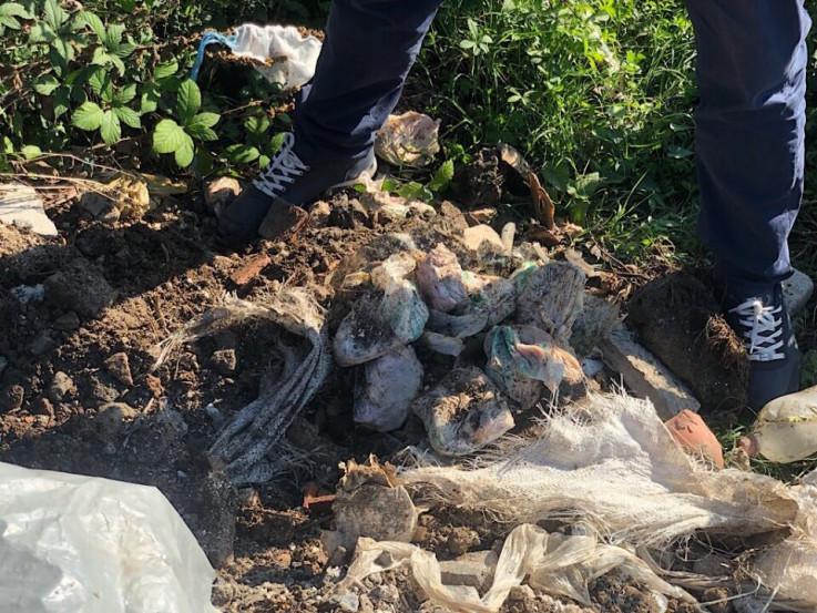 Istražitelji otkopali ostatke mesa