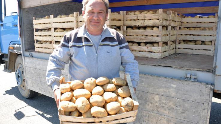 Despotović: Prodaje krompir  - Avaz, Dnevni avaz, avaz.ba