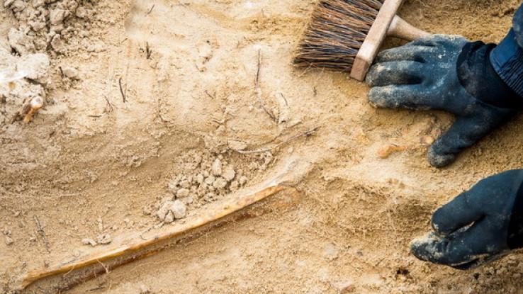 Na slici koja je objavljena vidi se dio poda koji je ukrašen bogatim mozaikom