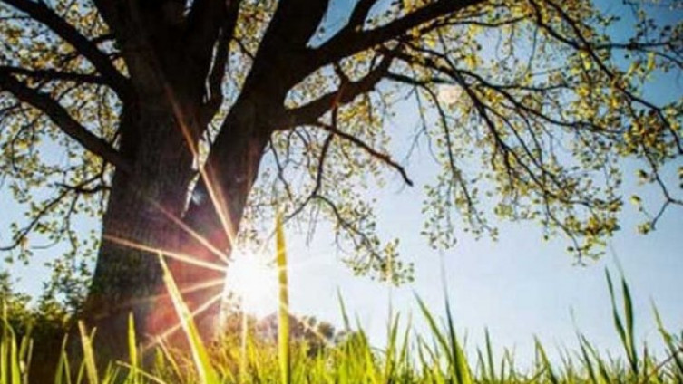 Najviša dnevna temperatura bit će između 28 i 34 stepena