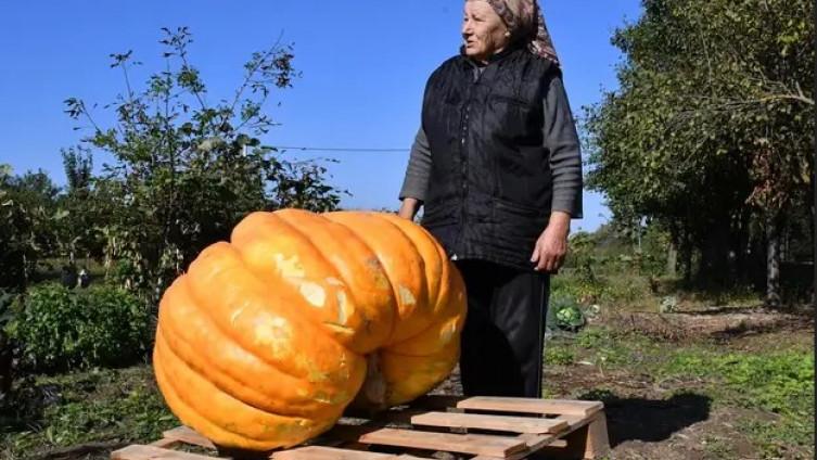Kartalij: Teška je sigurno više od 120 kilograma