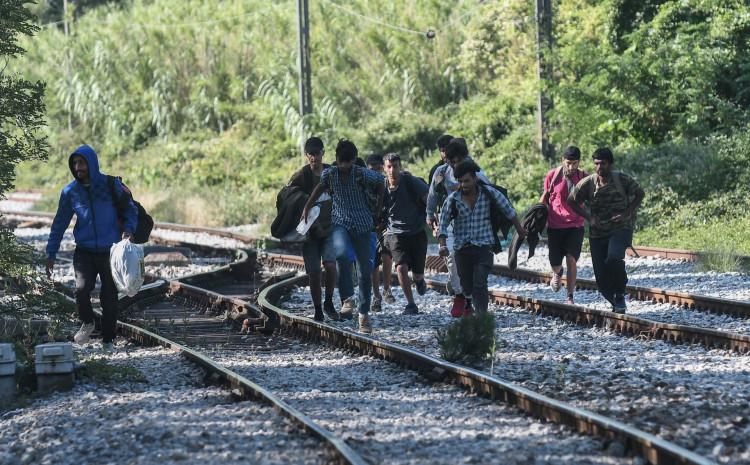 Većina migranata iz Afganistana, Pakistana, Sirije, Irana i Egipta