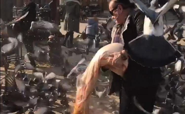 Sejo Brajlović hrani golubove