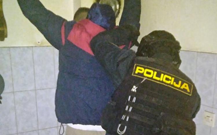 Detlj s akcija hapšenja