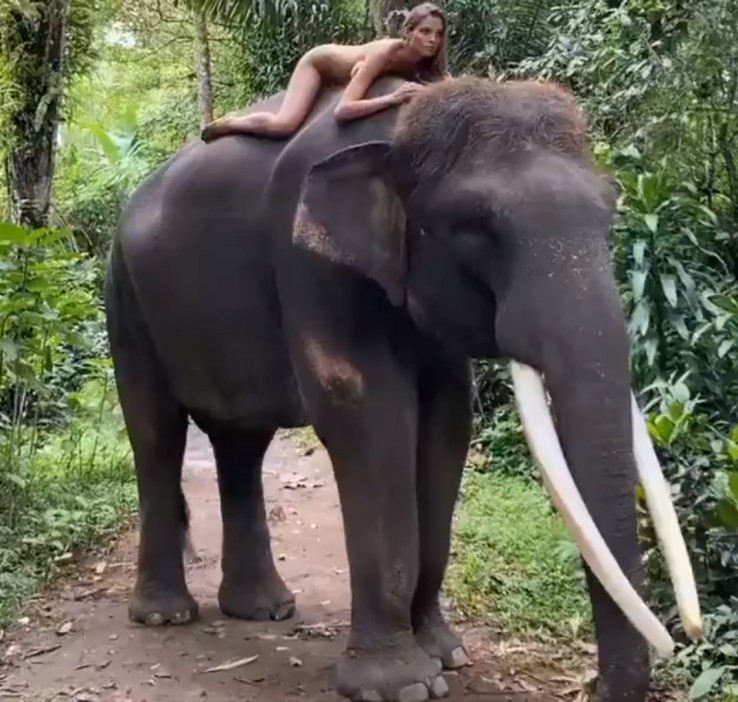 Alesija Kafelnikova fotografirala se gola na slonu