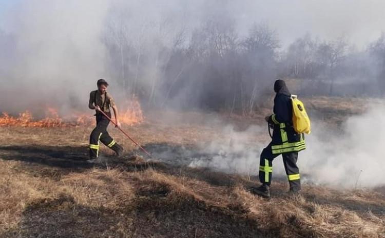 Vatra se na azil proširila zbog zapaljenog niskog rastinja