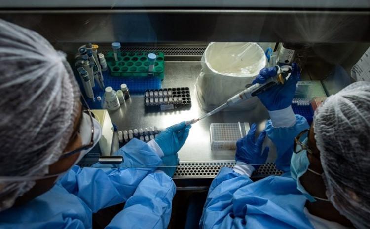 Otkriven novi soj koronavirusa