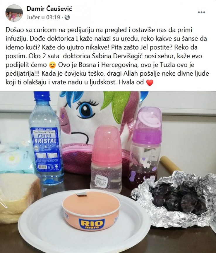 Status Damira Čauševića