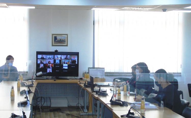 Tadić sa saradnicima učestvovala u videokonferenciji
