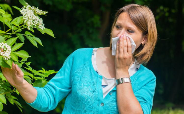 INZ: Potrebno je skrenuti pažnju na sezonski polen, i to polen drveća - rano proljeće, polen trava - kasno proljeće i ljeto, te polen korova