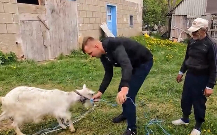 Hamid: Poklonio kozu