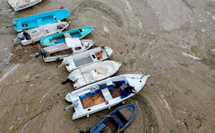 Nekim ribarima je onemogućen rad jer im mulj uništava mreže i motore