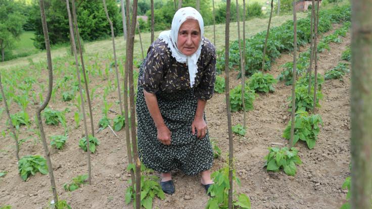 Živi od plodova iz svoje bašče i ramazanskih vitri