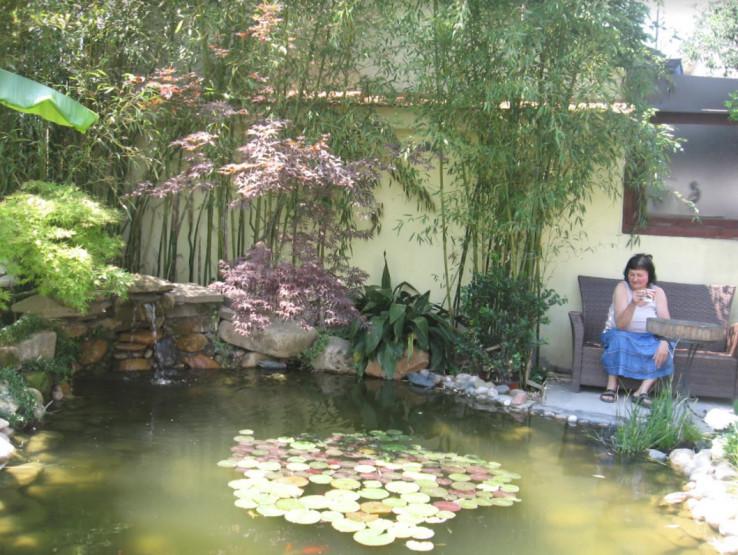 Uz fontanu nalazi se jezerce s ribicama