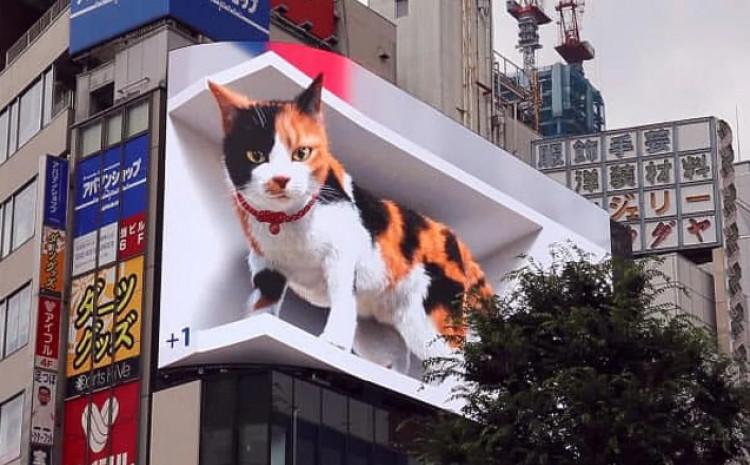Gigantska 3D mačka