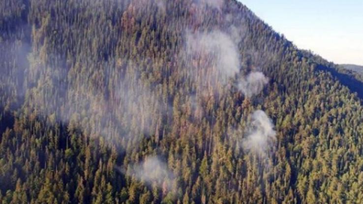 Nepristupačan teren pravi problem i za helikoptere