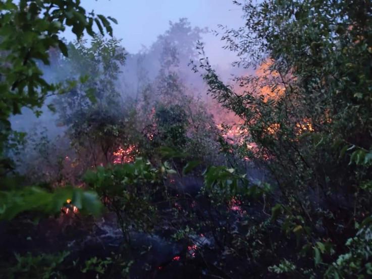 Trenutno su aktivni požari u rejonu Ljute, Spiljana, Zukića