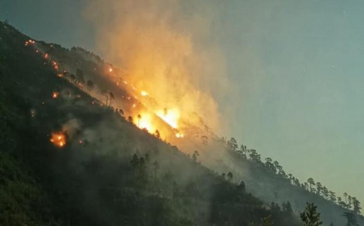 U podnožju planine Zvekuše na lokalitetu Galata sinoć je ugašen lijevi krak požara