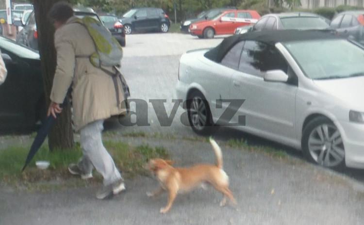 Hasan Ganibegović ostavio psa ispred Suda BiH