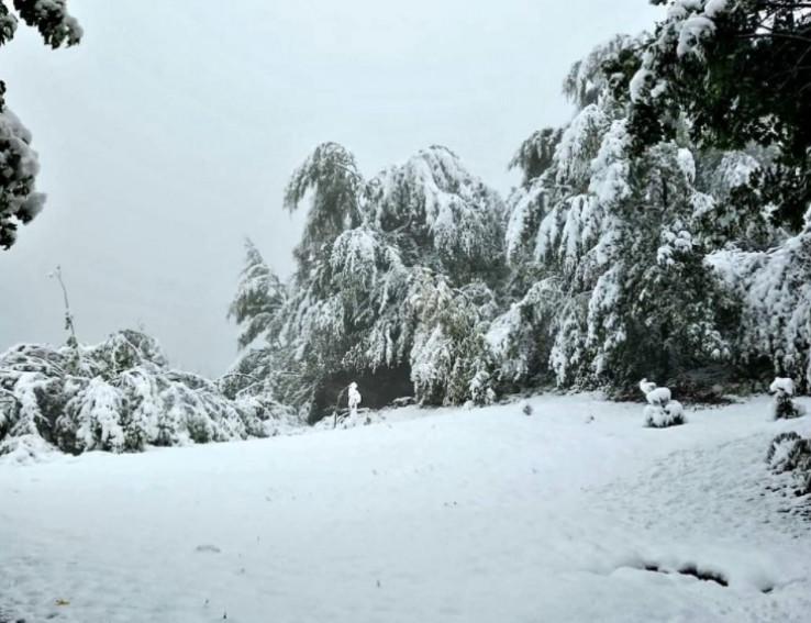 Snijeg jučer počeo padati
